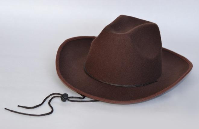 Trek Felt Hat