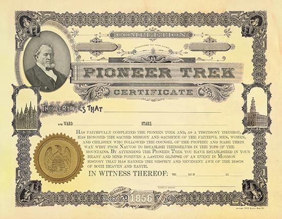 Trek certificate 3