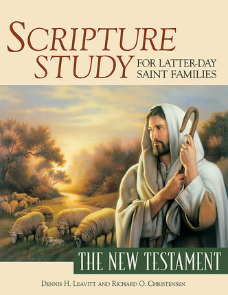 Scripture Study- New Testament