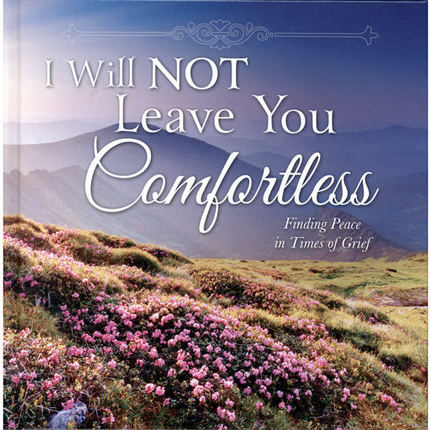 Image result for i will not leave you comfortless lds